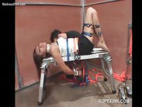 Incredible brunette babe tied up by worker