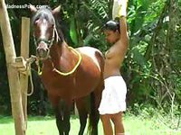 Horny slut penetrated by a horse