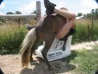 Farm worker lays on his back and gets anal fucked by a horse on a bail of hay
