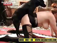 Pretty and voluptous wife in black nylon stockings enjoying animal sex with two beasts