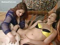 Leggy brunette animal sex newcomer spreads her long legs to receive an animal dick