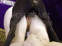 Bent over amateur girl getting pounded by her four legged animal