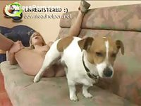 Tiny little dog enjoys having his dick buried deep in a teen amateur newcomers pussy
