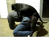 Part-time cop with a beastiality fetish getting fucked by his K9 partner