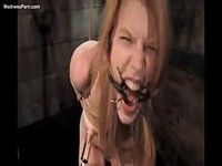 Bondaged girl finds pleasure in pain