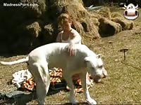 Beautiful housewife giving a dog head before getting fucked doggystyle
