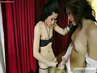 Pair of young transsexuals in sexy lingerie jerking off together