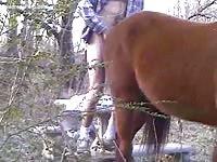 Horny guy dangerously licks and fucks a horses asshole