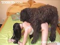 Large fluffy animal slamming away on a petite fresh-faced teen newcomer