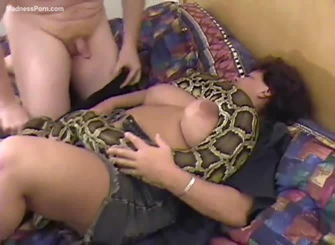man with female snake sex videos