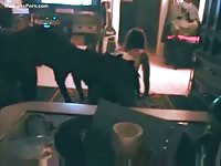 Drunk sexy teen is having fun with her dog in the living room