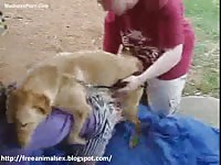 Stunning eighteen year old Angela welcomes her first bestiality encounter with a large dog