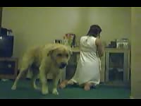 Filthy married slut getting drilled good by a dog in this thrilling beastiality fucking movie