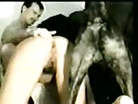 Horny dark-haired married hoe blowing her dudes dick while being licked by an animal