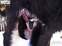 High-quality animal creampie movie as this pretty college-aged girl gets knotted in by a dog