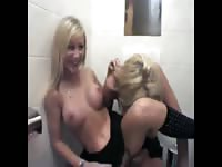 Pair of sexy blonde bodacious tramps with their fake tits out pissing in a public toilet