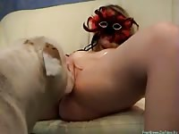 Petite young beauty in a seductive mask spreading her thighs to enjoy oral sex from her K9