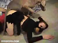 Stunning teen babe getting drilled by a dog in this thrilling hardcore animal fetish footage
