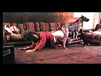 Dick starved thick MILF getting screwed nicely by a big dog in this great beast sex video